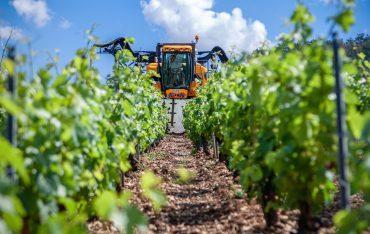 Rolnictwo – nowy kierunek!
